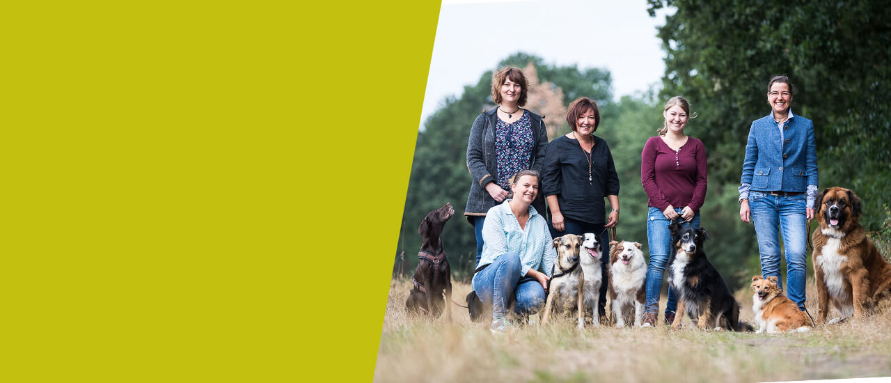 Hundeschule Ziemer Team 2018
