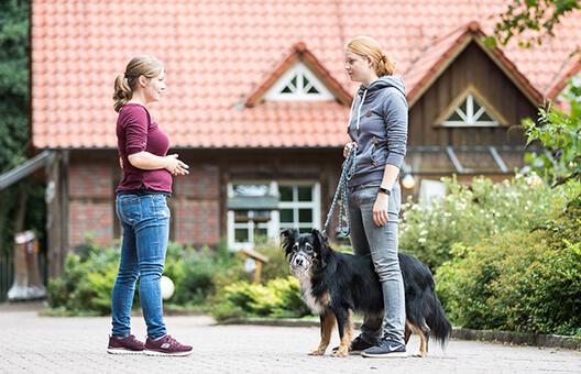Hundetrainerin draußen mit Halterin beim Maulkorbtraining